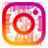 Bonsaikido en Instagram